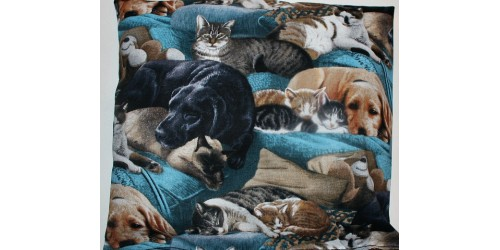 L'amour des Chiens et des Chats (format carré)