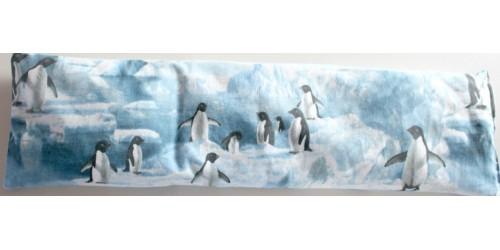 Les Pingouins sur la banquise